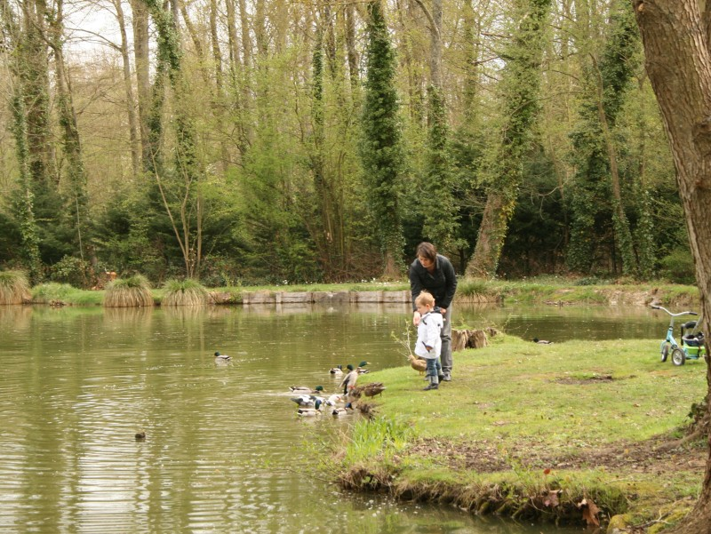 Visite guid e les secrets du parc de l 39 aleu saint for Parc yvelines visiter