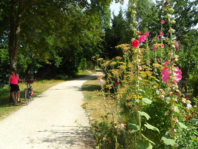 Agenda des sorties et v nements yvelines tourisme for Yvelines tourisme