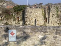 Ruines du château de Beynes